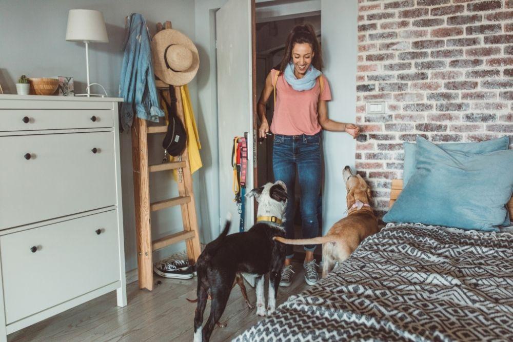 Ganhar Dinheiro Em Casa Oferecendo Serviço de Cuidadora de Animais de Estimação
